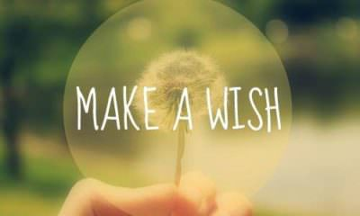 Make a Wish- mybigplunge
