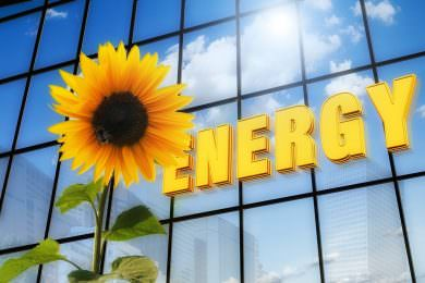 Hyderabad-based Cygni Energy becomes Start-up India Action Plan's first beneficiary- mybigplunge