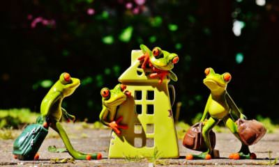 Home interior marketplace Livspace raises 100 crores- mybigplunge