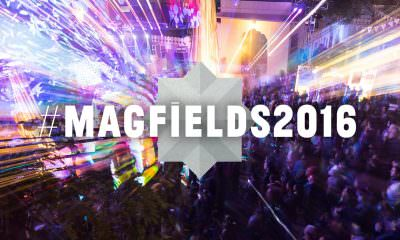 Magnetic Fields music festival