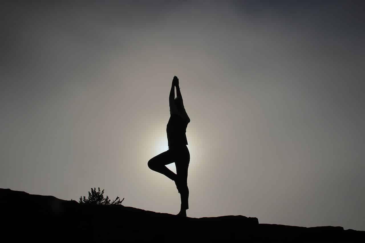 Image result for tourism india Yoga Institute