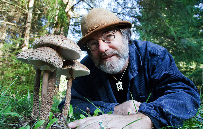 Smart pesticides - patented by mycologist Paul Stamets could disrupt the  pesticide industry and save our world