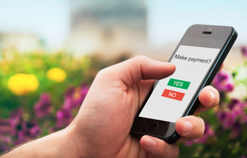 digital wallets and cashless transactions