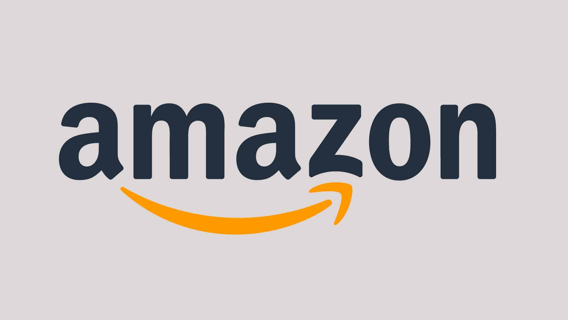 Amazon wins interim relief_mybigplunge