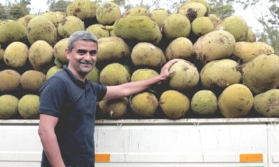 Startup India Award-winning Jackfruit Flour for Diabetics Takes the Healthcare Sector by Storm