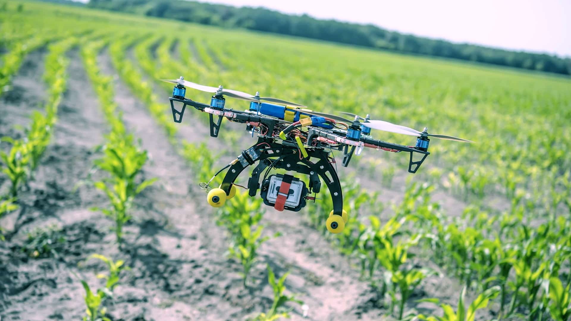 Agdhi launches AI-based tech to check quality of seeds
