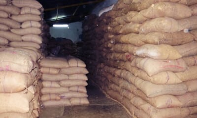 Rice procurement restricted at last year's level for Chhattisgarh as per policy: Centre