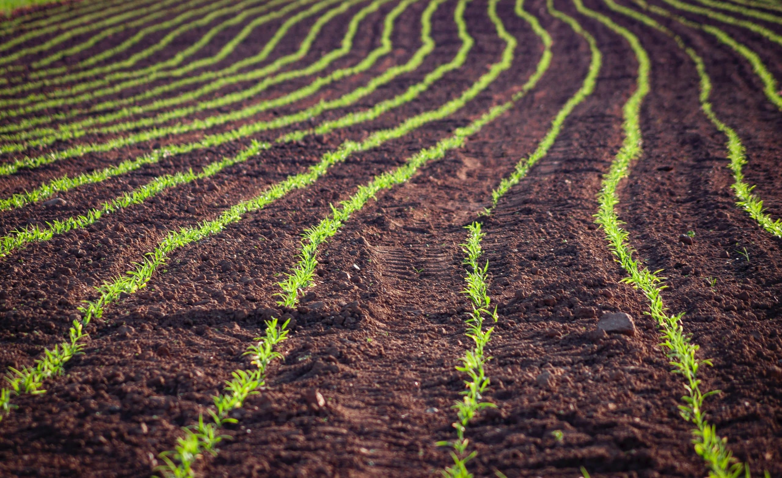 Agri10x raises seed round from Omnivore