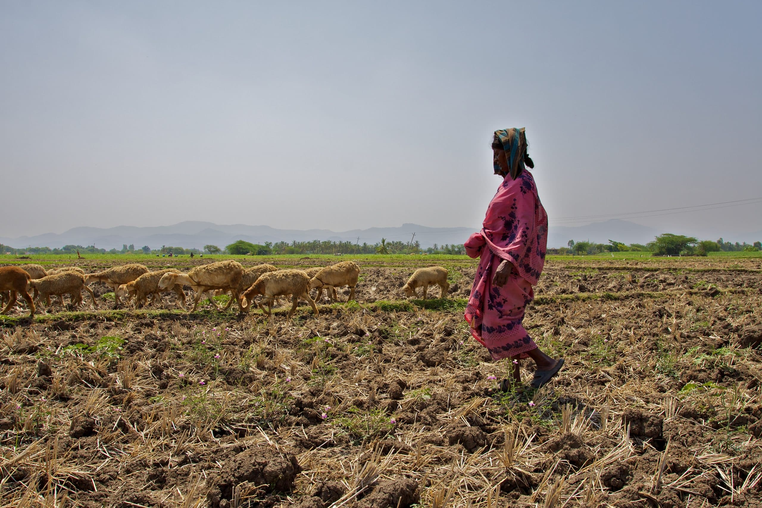 Women join farmers to protest new farm laws
