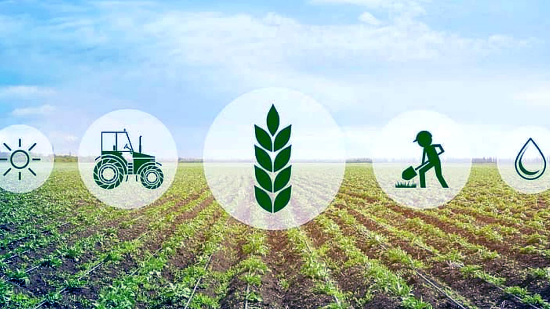 Agritech firm Arya partners Canara Bank to help farmers, FPOs