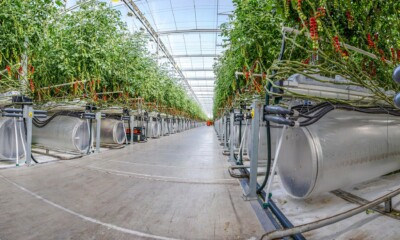Start-up that grows food in the desert secures $60 mn funding