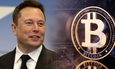 Elon Musk suspends Tesla purchases using Bitcoin, cites environmental concerns