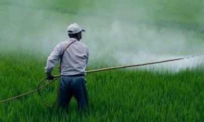 fertiliser agriculture