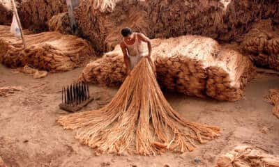 Raw jute crisis- Govt may have to spend Rs 2,000cr more to procure bags