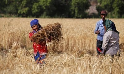 Farmers not content with hike in MSP on kharif season crops