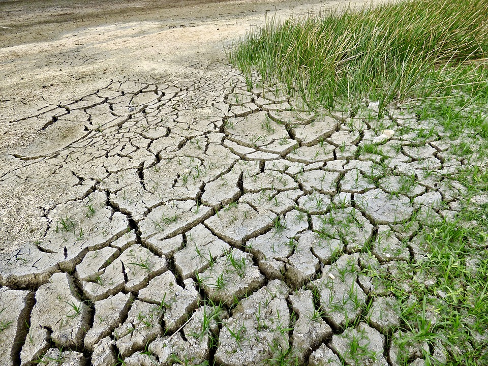 India could lose 3-10% of its GDP annually by 2100, spike in poverty rate due to climate change