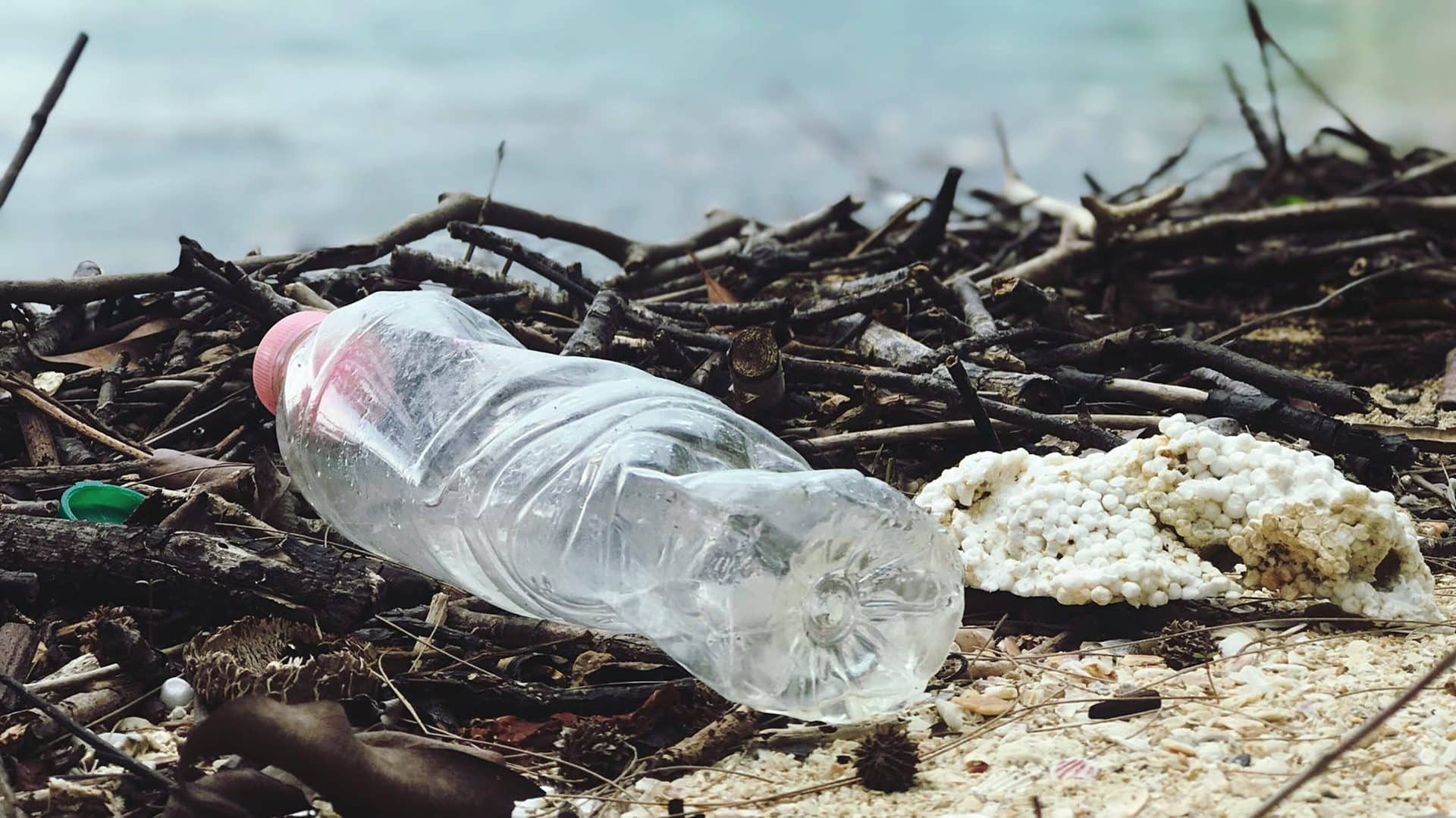 Environment ministry launches awareness campaign on Single Use plastics