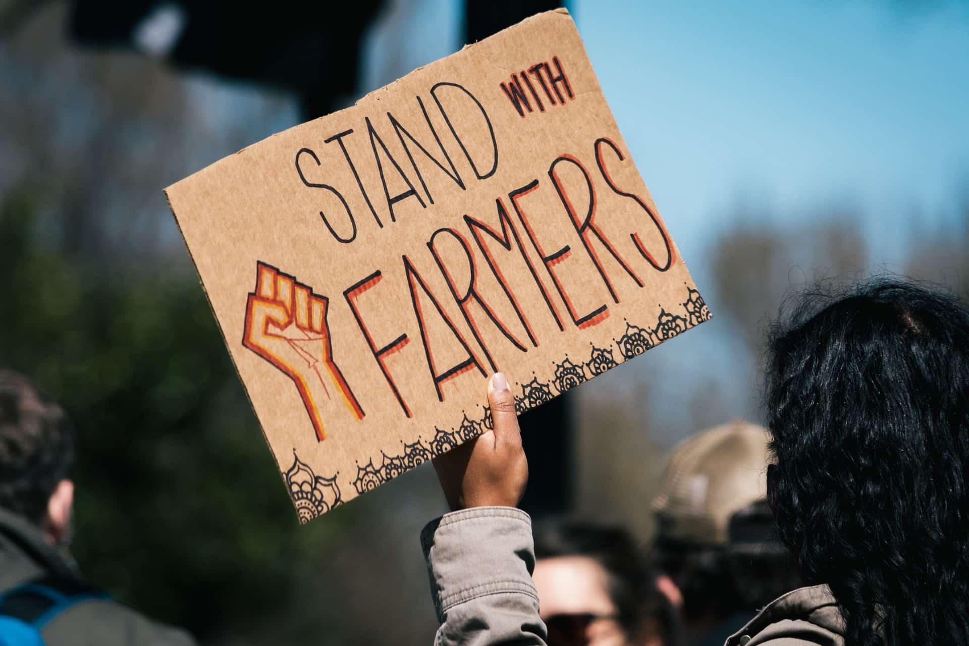 Punjab CM blames BJP for the farmers' wrath, repeal new farm laws
