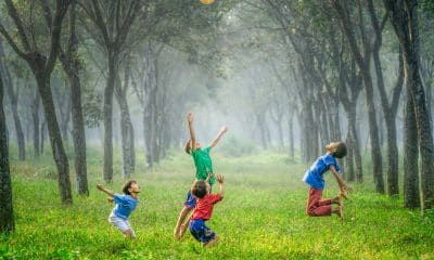 Encourage child-led play to develop imagination and motor skills: Psychologists