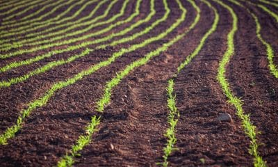 Agri-start up Agdhi bags USD 70,000 grant for flagship product SeedVision