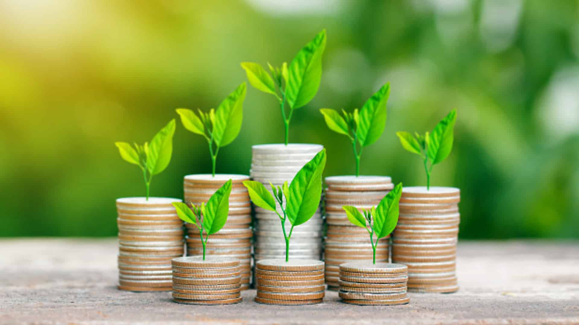 Anar raises USD 6.2 mn funding from Elevation Capital, Accel India and others