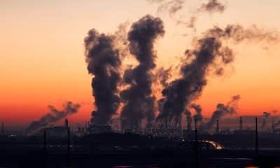 World Ozone Day: Increasing ground-level Ozone poses health risks
