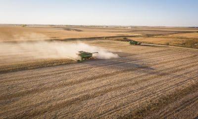 Big Tech giants keen to harness India's farm data