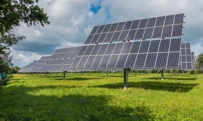 Adani Green inks pact with Essel Green to acquire 40 MW solar plant