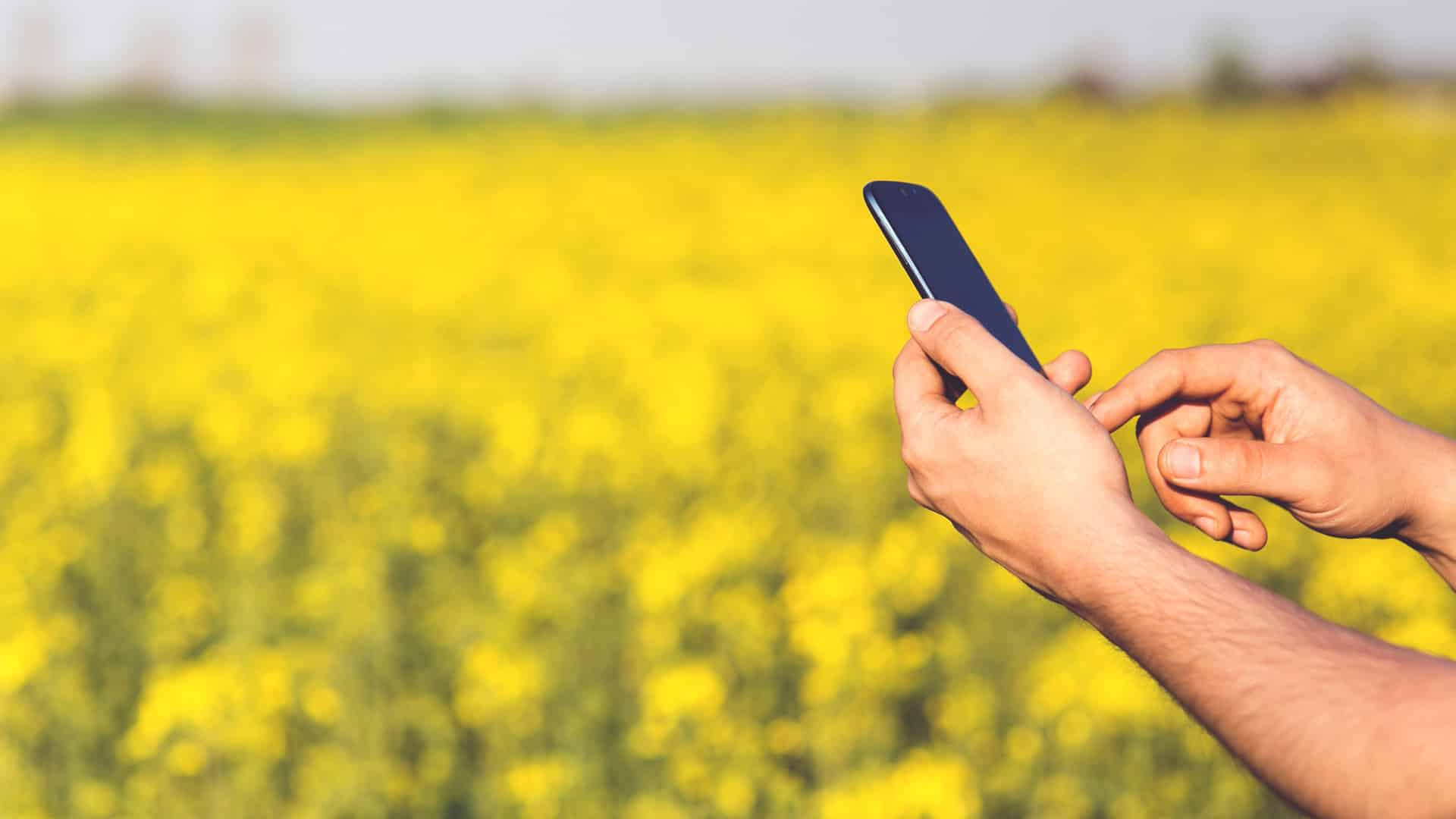 SLCM launches mobile app 'AgriReach' to check quality of agri-commodities
