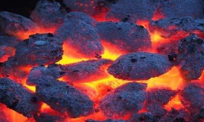 Coal India stops e-auction of coal amid shortage