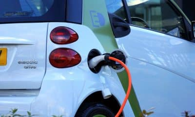 Businesses seek government support to meet EV target by 2030
